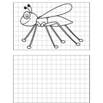 Bug Drawing