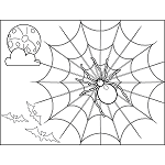 Spooky Spider Web