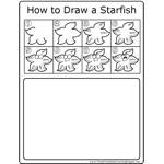 How to Draw Starfish