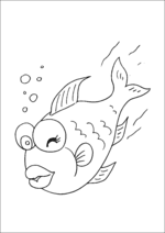 Fish Swimming And Winking