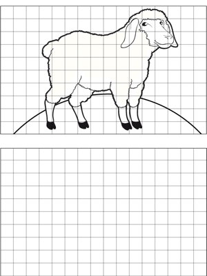 Sheep Drawing coloring page