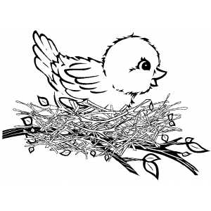 Bird In Nest coloring page
