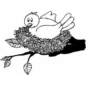 Bird In The Nest Coloring Page