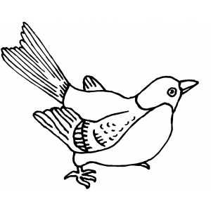 Bird Ready To Fly coloring page