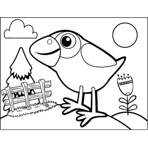 Curious Bird coloring page
