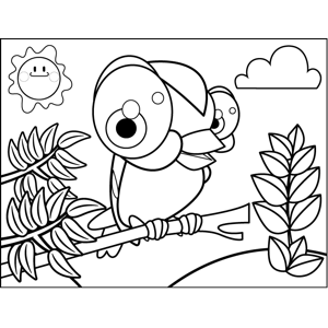 Curious Finch coloring page