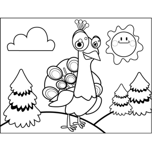 Curious Peacock coloring page