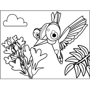 Cute Hummingbird coloring page