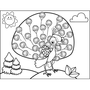 Cute Peacock coloring page