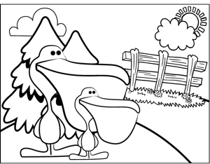 Cute Pelicans coloring page