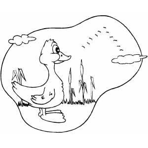 Duck Looking At Flying Birds coloring page