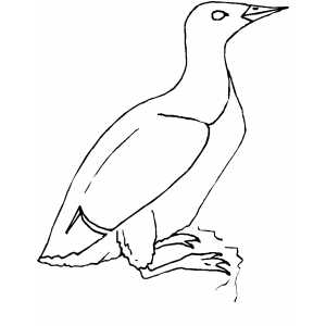 Murlet coloring page