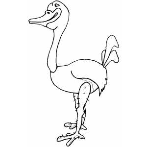 Ostrich Smiling coloring page