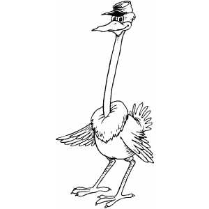 Ostrich With Cap coloring page