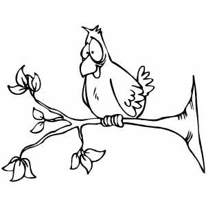 Perched Bird coloring page