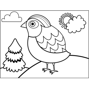 Pretty Patterned Bird coloring page
