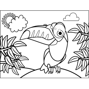 Proud Toucan Coloring Page