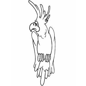 Sad Cockatoo coloring page