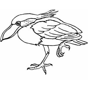 Shoe Bill On One Leg coloring page