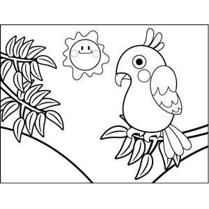 Shy Parakeet coloring page