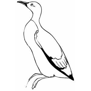 Sitting Murlet coloring page