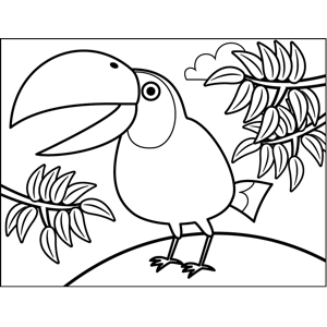 Squawking Toucan coloring page