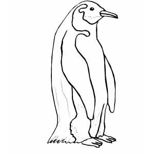 Standing Penguin coloring page