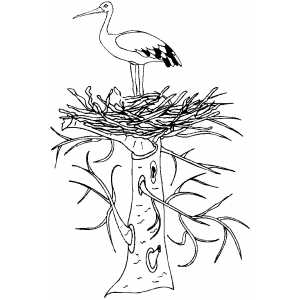 Stork In Nest coloring page