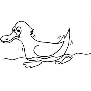 Swimming Duck coloring page