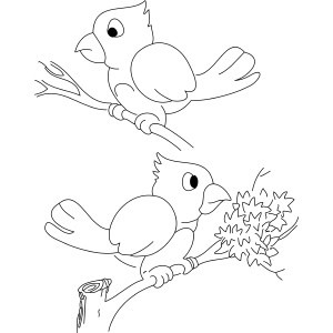 Two Cardinals coloring page
