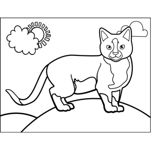 Proud Standing Cat coloring page