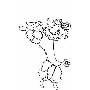 Circus Poodle coloring page