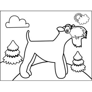 Bearded Dog coloring page