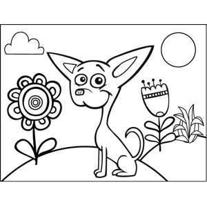 Cute Chihuahua coloring page
