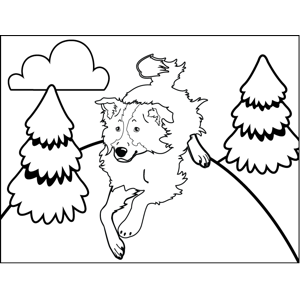 Dog Playing coloring page