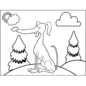 Eager Greyhound coloring page