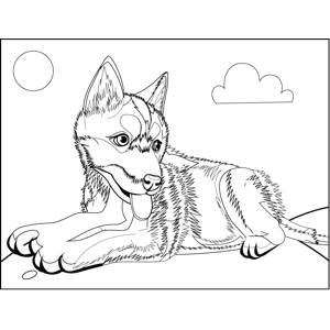 Fluffy Husky Pup coloring page