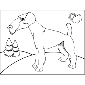 Mysterious Dog coloring page