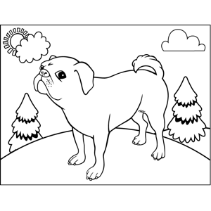 Proud Bull Terrier coloring page