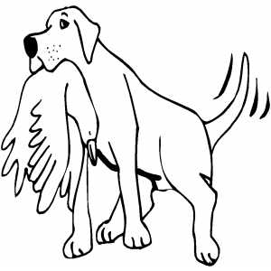 Retriever With Bird coloring page