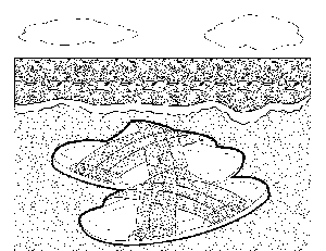 Sandals on the Beach 2 coloring page