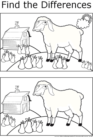 FTD Sheep and Pears coloring page