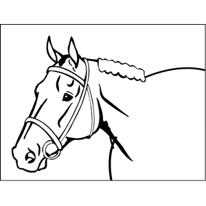 Bridled Horse coloring page
