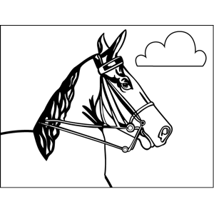 Horse Close-Up coloring page