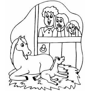 Horse Giving Birth coloring page