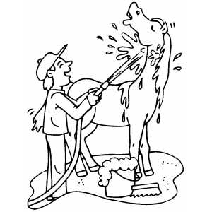 Man Washing Horse coloring page