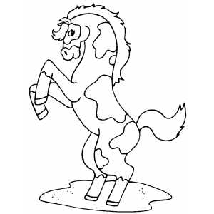 Pinto Horse coloring page