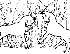 Ponies Playing Coloring Page