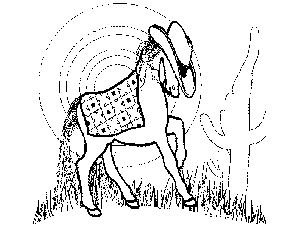 Ranch Pony Coloring Page