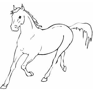 horses coloring pages - Running Horse Coloring Pages